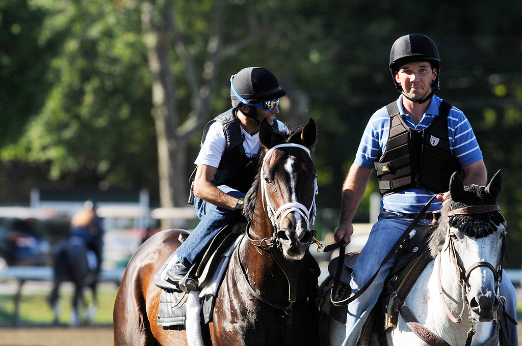 Description of . Johnny Velazquez breezed Verrazano on Saratoga Race Course Sunday morning, trained by Todd Pletcher, set to run in Travers Stakes.Photo Erica Miller/The Saratogian 8/11/13 spt_Verrazano4