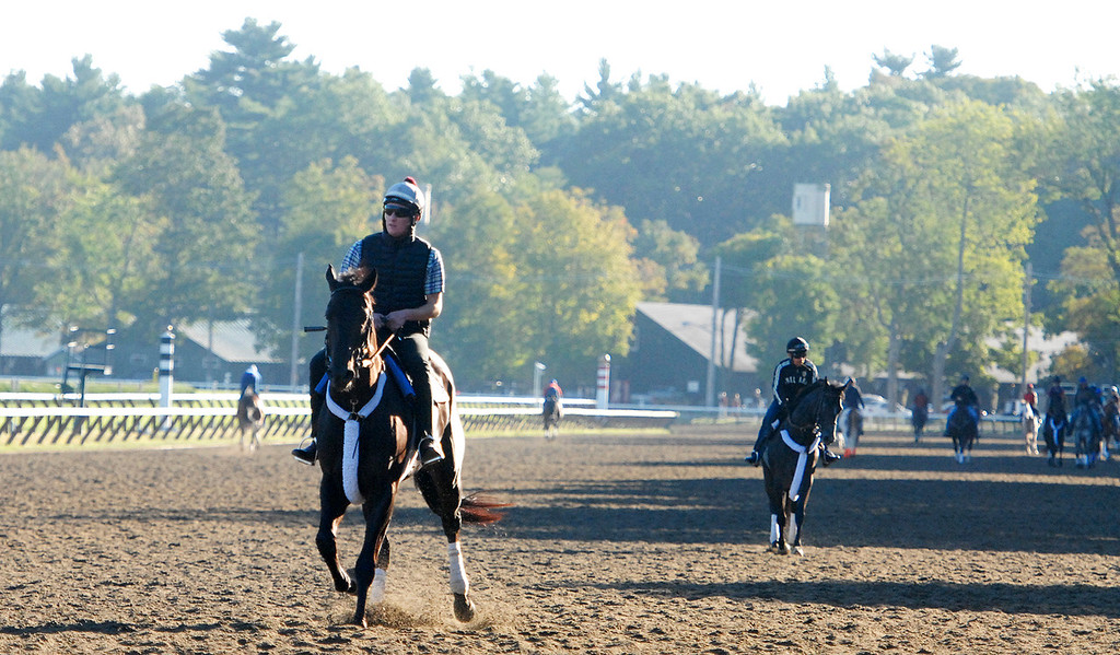 Description of . Riders during early morning workouts on the Saratoga Race Course, hours before opening hours for the Travers Day on Saturday morning.Photo Erica Miller/The Saratogian 8/24/13 news_TheMadDash11