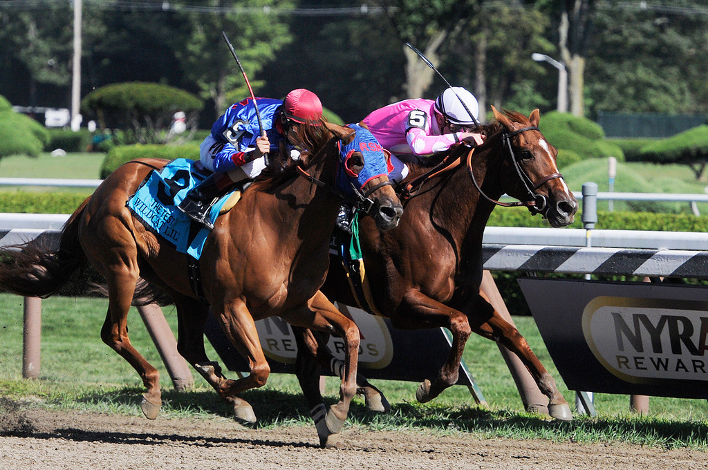 Description of . With a short lead Sweet Lulu ridden by Julien Leparoux won the 88th Running of The Test Grade 1 Stakes at the Saratoga Race Course on Saturday.Photo Erica Miller/The Saratogian 8/24/13 TheTestEM1