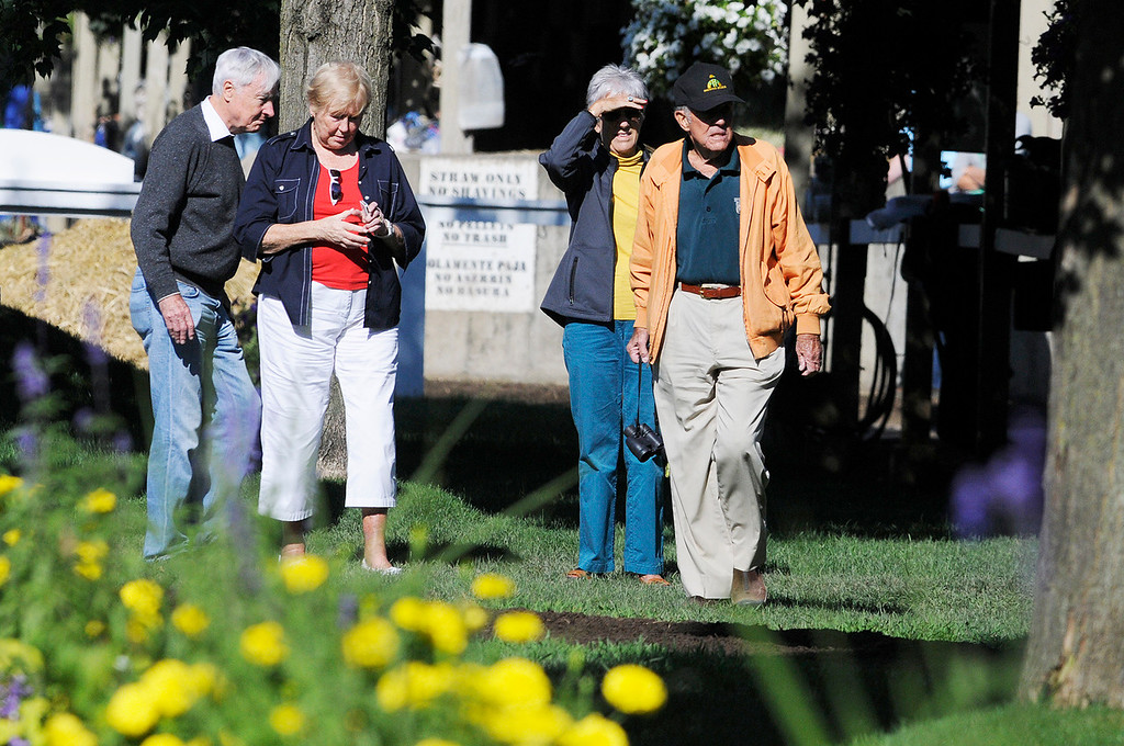 Description of . Cot and Anne Campbell were spotted at Todd Pletchers barn after Exercise Rider Jake Nelson breezed Palace Malice on Sunday morning. Set to run in Travers Stake at Saratoga Race Course.Photo Erica Miller/The Saratogian 8/11/13 spt_PalaceMalice3