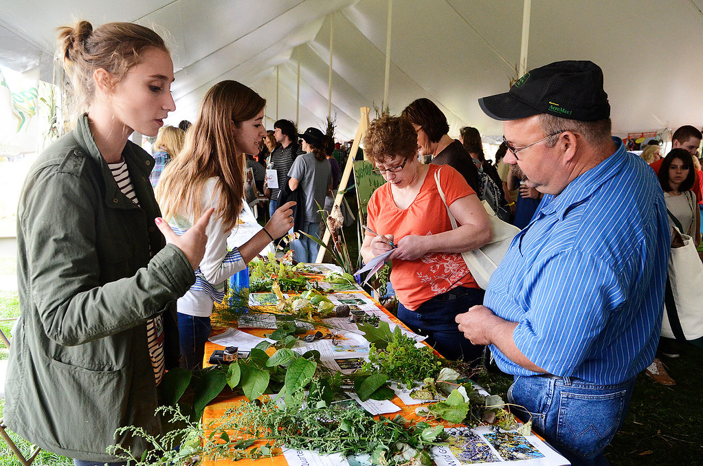 Description of . Erica Miller - The Saratogian
