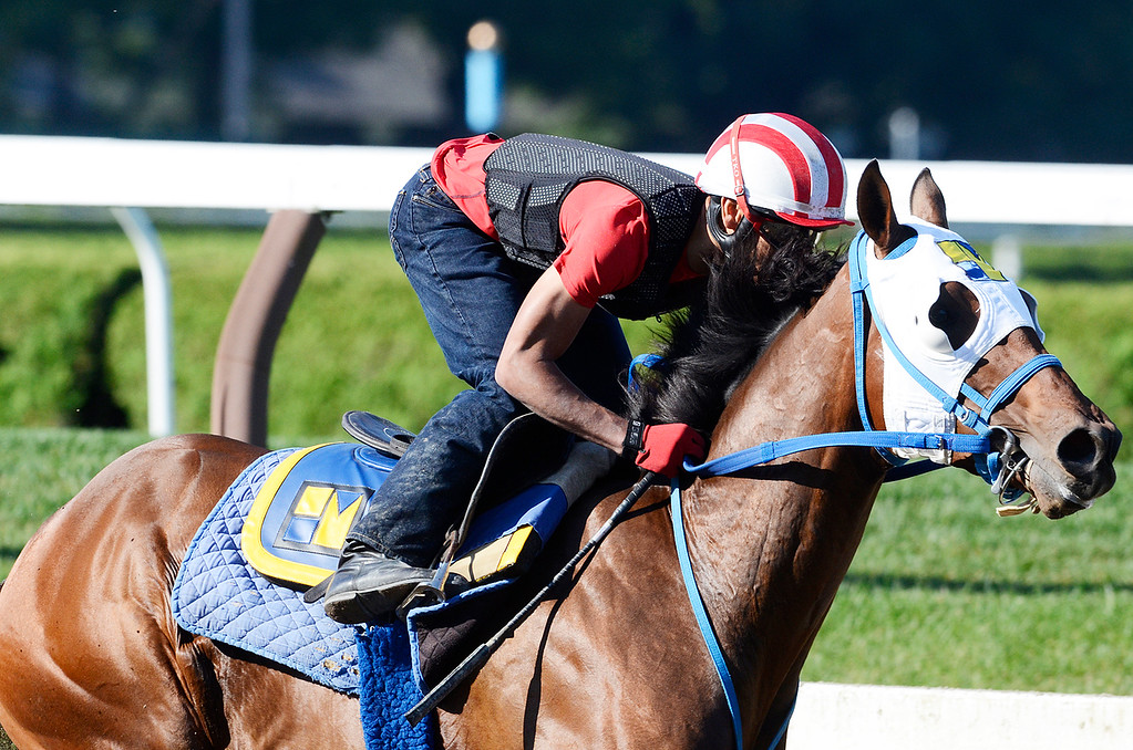 Description of . Jockey Jose Ortiz breezed Moreno, trained by Eric Guillot, on Saturday morning at the Main Track on the Saratoga Race Course, set to run in the Travers. Photo Erica Miller 8/17/13 Moreno3