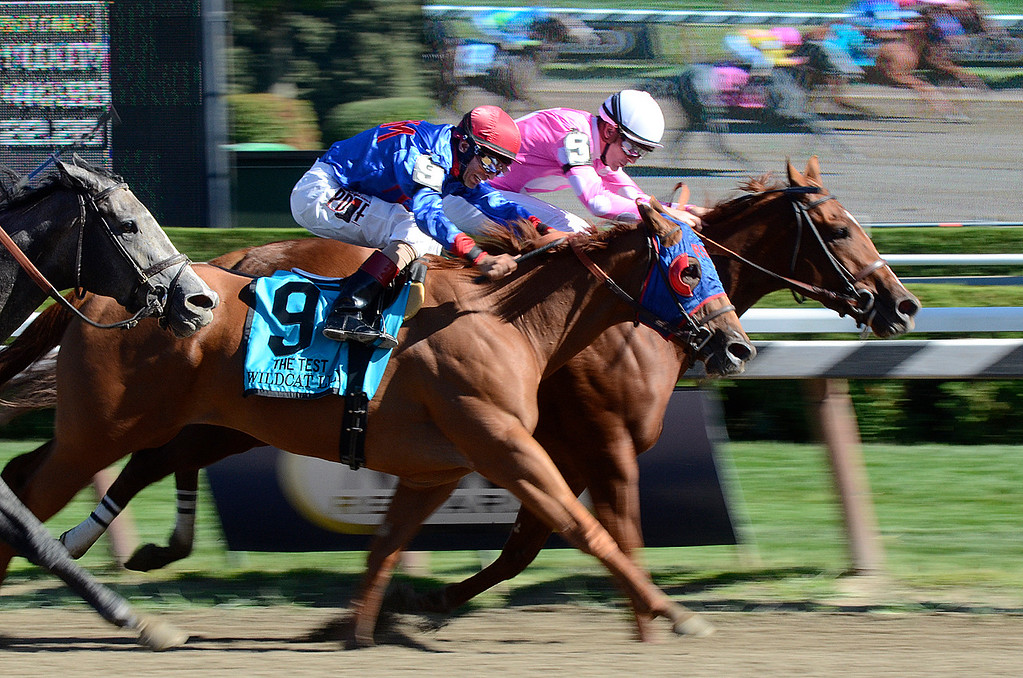 Description of . Sweet Lulu and Julien Leparoux head for a win in The Test over Wildcat Lily and John Velazquez. Photo Ed Burke 8/24/13
