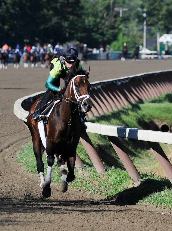 Description of . Exercise Rider Jake Nelson atop Palace Malice breezed on Sunday morning, trained by Todd Pletcher from Dogwood Stables, set to run in Travers Stake at Saratoga Race Course.Photo Erica Miller/The Saratogian 8/11/13 spt_PalaceMalice1