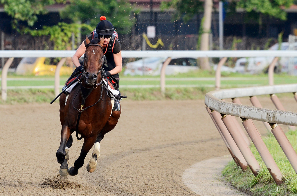 Description of . Exercise rider Jen Patterson sits atop Kentucky Derby winner Orb Aug 19, 2013 after his final major work on the Oklahoma Training Center track in Saratoga Springs, N.Y. Orb will compete in Saturday's Travers Stakes at the Saratoga Race Course.Photo Erica Miller/The Saratogian 8/19/13 Orb2