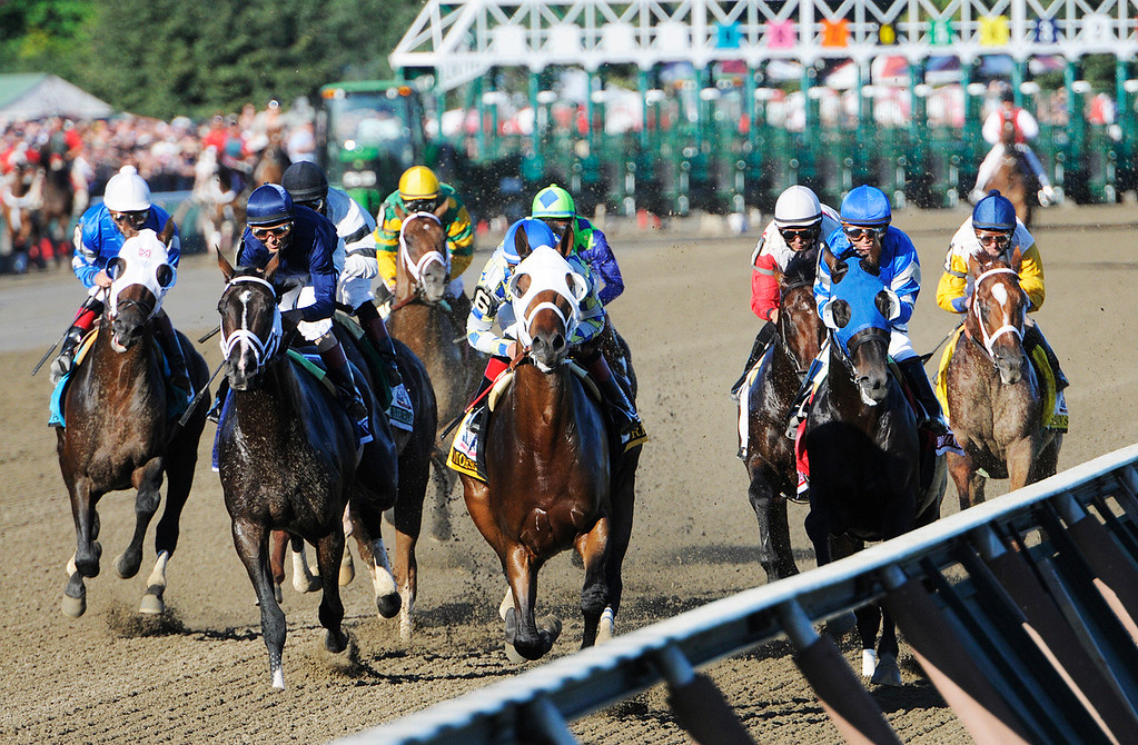 Description of . The Start of the Travers Stakes this Saturday afternoon at the Saratoga Race Course.Photo Erica Miller/The Saratogian 8/24/13 TraversEM3