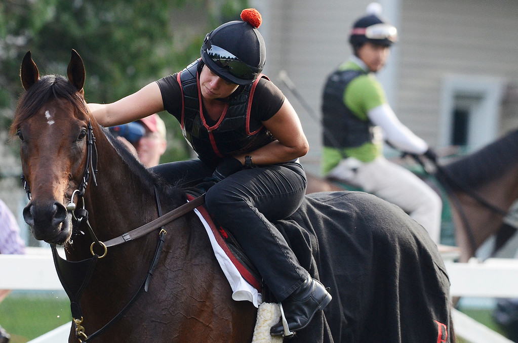 Description of . Exercise rider Jen Patterson sits atop Kentucky Derby winner Orb Aug 19, 2013 after his final major work on the Oklahoma Training Center track in Saratoga Springs, N.Y. Orb will compete in Saturday's Travers Stakes at the Saratoga Race Course.Photo Erica Miller/The Saratogian 8/19/13 Orb5