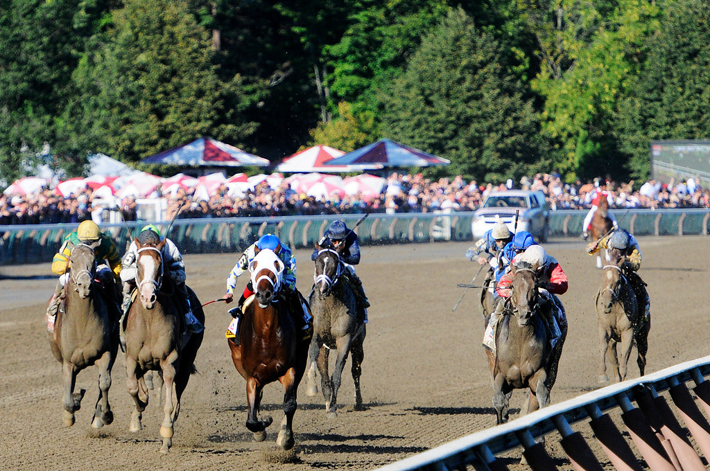 Description of . With a photo finish, Will Take Charge trained by D. Wayne Lucas ridden by Luis Saez won the million dollar Travers Stakes this Saturday afternoon at the Saratoga Race Course.Photo Erica Miller/The Saratogian 8/24/13 TraversEM2