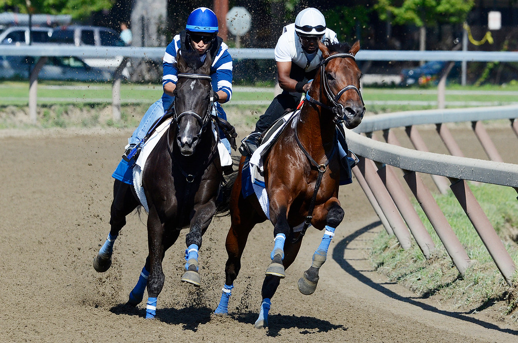 Description of . Alan Garcia, outside, atop War Dancer set to run in the Travers breezed on Saturday morning on the Oklahoma Training Track with Danny Ramsey atop So Raise Yourglass.Photo Erica Miller 8/17/13 WarDancer2