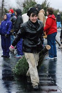 Erica Miller @togianphotog - The Saratogian.   On Wednesday morning, the day before Thanksgiving 11/27/13, over 720 Christmas trees from Vermont arrived at Curtis Lumber for the annual Rotary tree sale. Waiting in the cold rain, bundles up in a shed waited over 60 volunteers. Joining together with Ballston Spa Rotary Club were Saratoga Bridges, Boy scouts from Troop 1, 2 and 246, Ballston Spa HS Interact Club and teachers, Ballston Spa Lions Club, Ballston Spa Football teammates, Twin Bridges and Mechanicville's Rotary Club, family friends and other volunteers.     SAR-l-RotaryTREES9