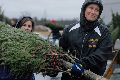 Erica Miller @togianphotog - The Saratogian.   On Wednesday morning, the day before Thanksgiving 11/27/13, over 720 Christmas trees from Vermont arrived at Curtis Lumber for the annual Rotary tree sale. Waiting in the cold rain, bundles up in a shed waited over 60 volunteers. Joining together with Ballston Spa Rotary Club were Saratoga Bridges, Boy scouts from Troop 1, 2 and 246, Ballston Spa HS Interact Club and teachers, Ballston Spa Lions Club, Ballston Spa Football teammates, Twin Bridges and Mechanicville's Rotary Club, family friends and other volunteers.     SAR-l-RotaryTREES11