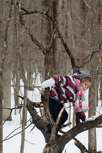 Erica Miller @togianphotog - The Saratogian:   Students at the Waldorf School's Forest Kindergarteners from the ages 3 1/2 through 6 years old located on the Saratoga Spa State Park land, where students curriculum is based on nature as the froth and center. Students had the morning to venture out into the woods to play around with other classmates.