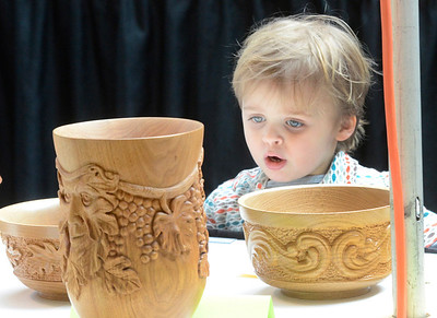 Ed Burke - The Saratogian 03/29/14 Carvings bring wide eyes to three year old Asher Bremser of Boston during the Northeast Woodworkers Association's Showcase at the Saratoga Springs City Center. Bremser and his family came to the show out of respect for a deceased relative who helped found the show  which is in its twenty third year. The show continues Sunday.