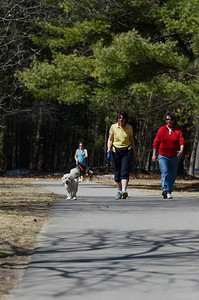 Erica Miller @togianphotog - The Saratogian:  On Friday morning, April 11th, 2014, Saratoga Springs residents Cindy Parker (right) and Deb Stacey, with her golden doodle Woofie, walked the Saratoga Spa Park trail on Avenue of the Pines.