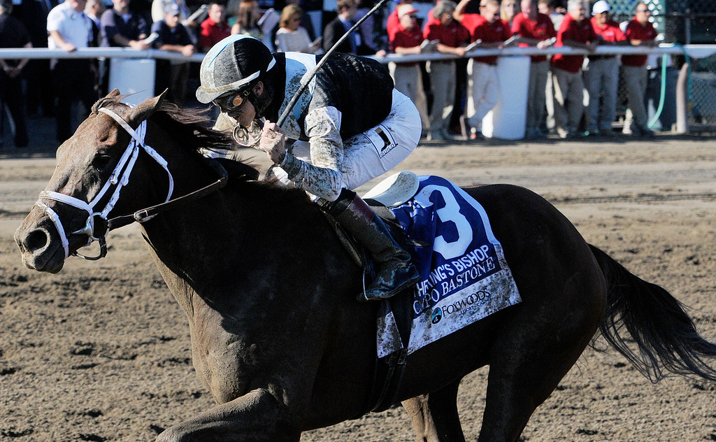 . Capo Bastone ridden by Irad Ortiz, Jr., and trained by Todd Pletcher won the 29th Running of The Foxwoods King\'s Bishop on Saturday at the Saratoga Race Course.Photo Erica Miller/The Saratogian 8/24/13 KingsBishopEM2