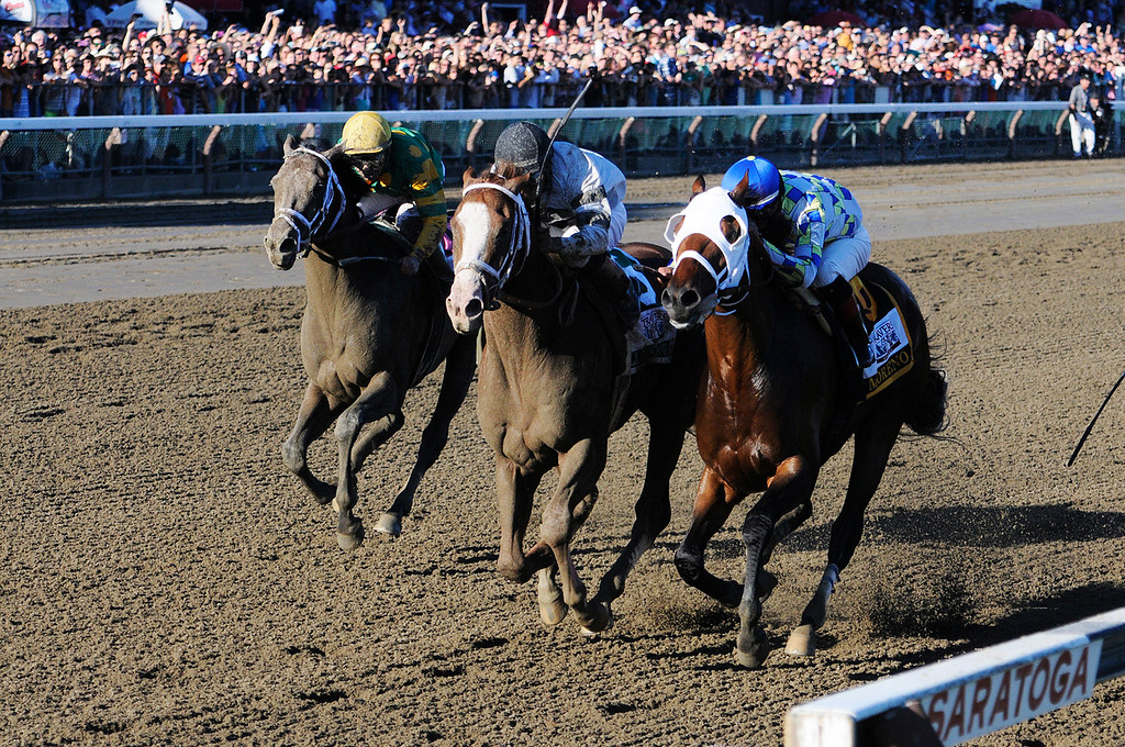 . With a photo finish, Will Take Charge trained by D. Wayne Lucas ridden by Luis Saez won the million dollar Travers Stakes this Saturday afternoon at the Saratoga Race Course.Photo Erica Miller/The Saratogian 8/24/13 TraversEM1